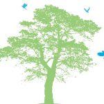 【動画】地球環境と景気も良くするグリーン・ニューディール(2019/10/18京都)